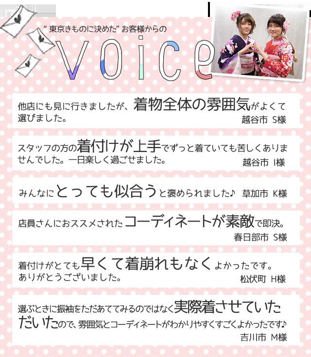 lp_voice